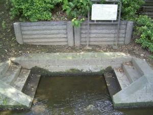 千川上水際の洗い場、階段付き
