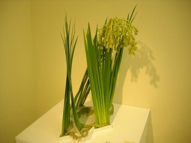 こちらも単色系、私の気に入った作品、稲ではありません